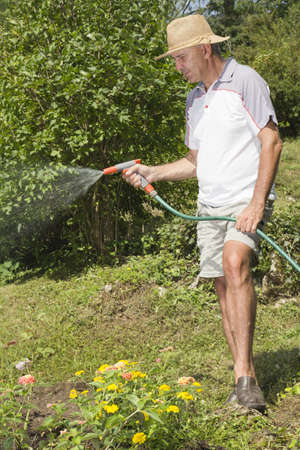 Mid age man watering the garden with hose photo