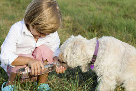 Young cute boy giving water to his dog, whilst playing on the grass photo