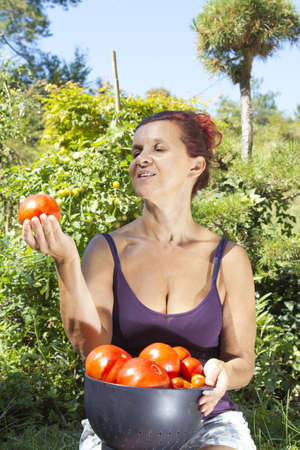 mid afternoon: Smiling mid aged woman holding organic tomatoes, on sunny summer afternoon