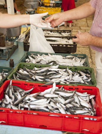 fish selling: Selling fresh fish on Mediterranean fish marketmarket Stock Photo