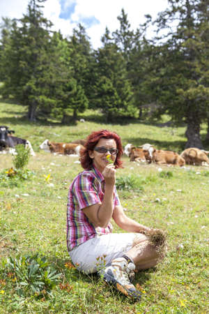 Smiling woman picking herbs on pasture, high in the mountain Stock Photo - 21604901