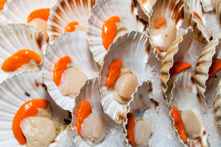 Fresh scallops on sunny Mediterranean market stall, closeup Stock Photo