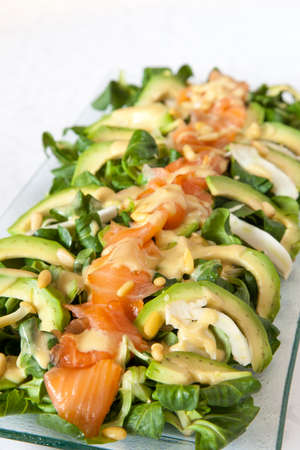 corn salad: Closeup of healthy salmon salad with avocado and fresh organic Corn salad;  M?che, Lamb\