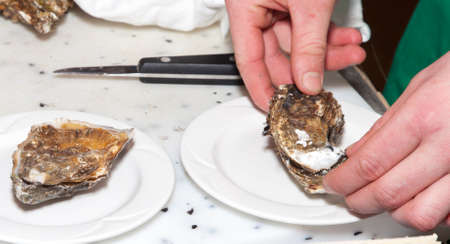 Chef is preparing fresh oyster with special oyster knife, close-up Standard-Bild