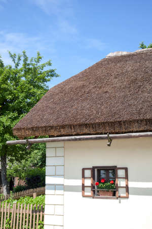 thatched cottage: Part of thatched cottage straw roof and wooden gutter