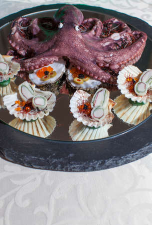 black octopus: Colorful Finger food Fruits of the sea with fresh scallop shells and red octopus, selective focus, space for text Stock Photo
