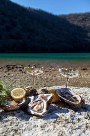 epicure: Romantic epicure orgy on the sea coast Fresh picked oysters and organic lemon and mediterranean herbs with silver champagne glasses Stock Photo