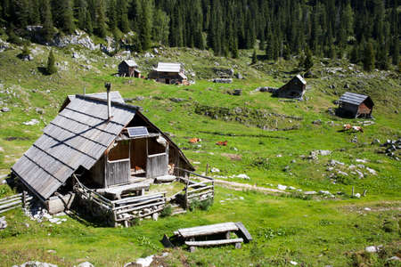 herdsman: Traditional herdsman wooden hut and cows high in the  Alps, on beautiful sunny day Stock Photo