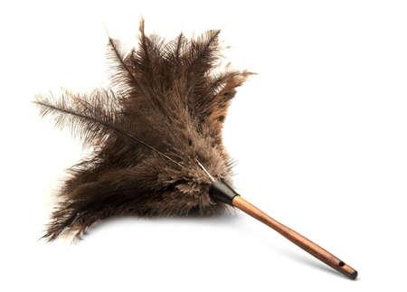 pluma blanca: cepillo de pluma