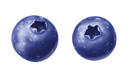 juicy fresh water drops of  blueberry with white background