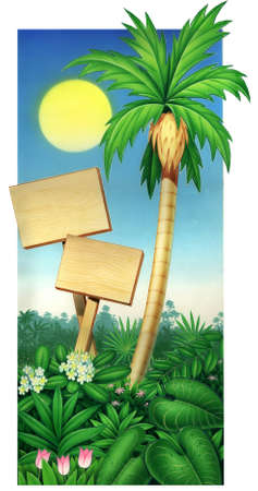 tropical palm tree and wood plaque with blue sky Stock Photo - 14602132