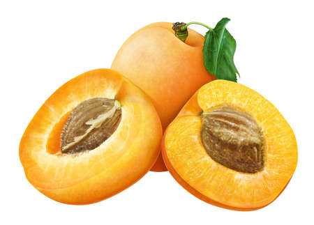 cross section of tree: juicy apricot with leaf on white background , fruits Stock Photo