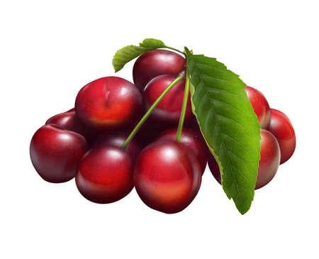 Illustration of fresh cherries isolated on white Stock Photo