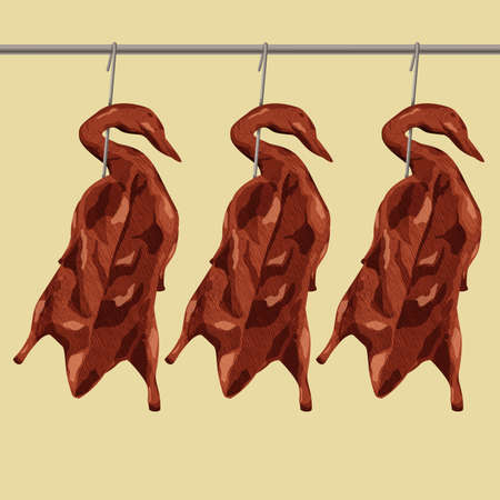 Illustration of Hong Kong style roasted duck