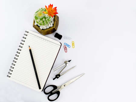 Study materials including a notebook,a black pencil a scissor a pencil compass a sharpener some paper clips and a miniature green tree scattered on a white paper background