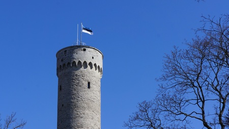 Massive old historic tower in Tallinn (Estonia) with a flagpole and the waving flag of Estonia on it. Blue cloudless sky and trees surrounding the scene. Editorial