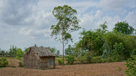 Farm life rural Vietnam - Dry field for growing vegetables with some trees and a shed. It seems time is sometimes standing still in southeast Asia. Stock Photo