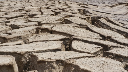 barren dry soil due to heavy drought