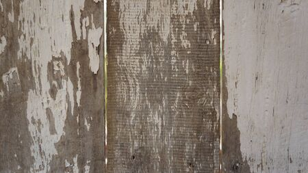 Grungy old wooden wall background. Some white color rest, some parts without painting.