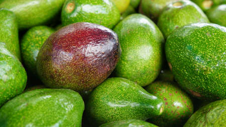 Avocados Bunch of fruits, ripe avocado one red fruit in bunch of green fruits Stock Photo