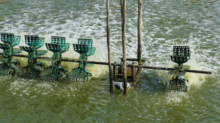 axle: Simple Water Treatment through Water Turbines Supplying Fish Pond with Oxygen. Plastic paddles on an axle rotating in the water bringing air into it. Stock Photo