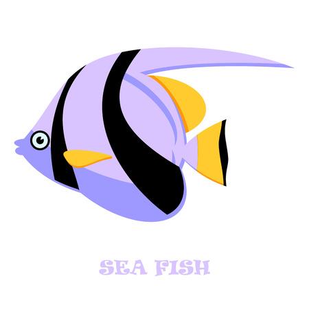 대양의: Sea Fish color vector illustration on white background. 일러스트