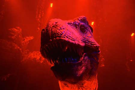 rex: rex