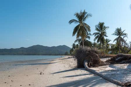phang nga: Phang Nga Bay Beach in Thailand Stock Photo