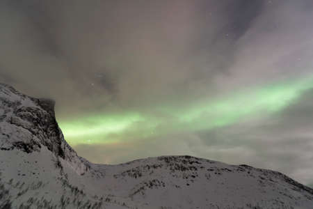 northern light: Northern Light