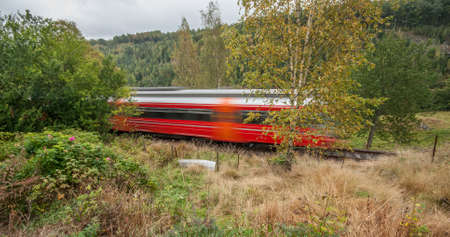 A red train passing on a track through the woods.