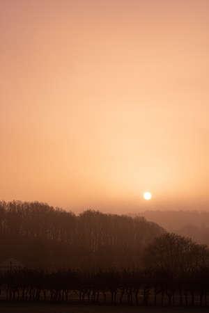 Orange and foggy sunrise over a park.
