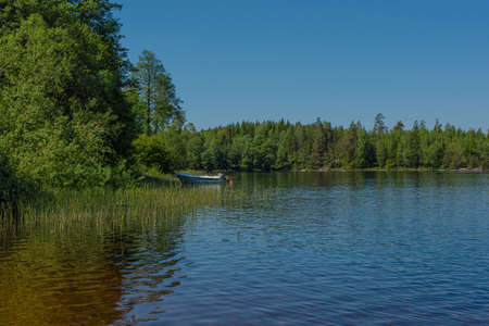 Forest around a small bay of a lake with a moored boat