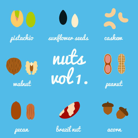 brazil nut: Vol 1. nuts and seeds icon set, background blue