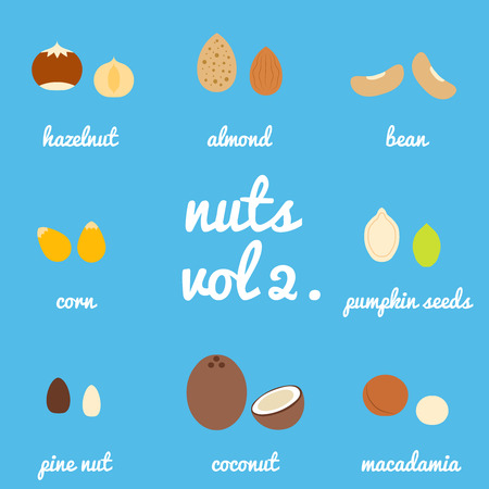 brazil nut: Vol 2. nuts and seeds icon set, background blue