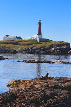 Lighthouse in the R&oslash,st arcipelago in Lofoten, Norway on a clare sunny, summer day with two seals posing in the foreground Stock Photo - 15955353