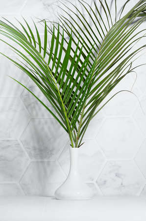Wellness modern lifestyle - white interior with green palm leaves bouquet in sunshine with shadow on marble tile wall, wood table, vertical. 免版税图像 - 166919727