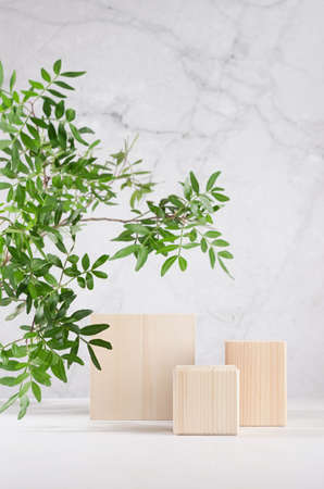 Eco natural style for presentation and display product - wooden podiums with green branch of tree in sunlight on white wood board and gray marble wall.