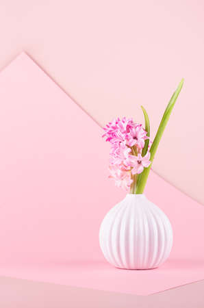 Fresh delicate spring pink hyacinth bouquet in ceramic vase on elegance geometric pink background, copy space, vertical. Festive backdrop for mothers day.