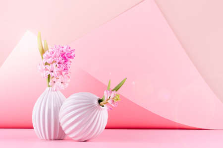Spring hyacinth flowers in white ceramic vases in elegant pink geometric space with sunbeam, sun flare, modern springtime background. Festive backdrop for 8 march. 免版税图像