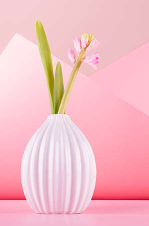 Elegant tender pink hyacinth bouquet with young buds and sprout in ceramic vase on pastel pink background in minimalist geometric style for mothers day, vertical.
