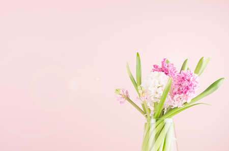 Fresh delicate spring white hyacinth bouquet in vase with sunlight and sun flare on pastel pink background, copy space. 免版税图像