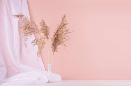 Modern home interior with elegant bouquet of beige fluffy reeds in vase and airy silk curtain on white wooden table and pastel pink wall.