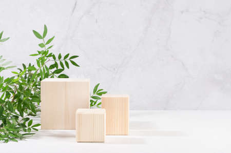 Wooden square podiums with green branch of tree in sunlight on white wood table, marble wall. Fashion showcase for cosmetic products, goods, shoes, bags, watches.