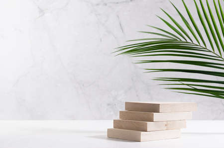 Elegant beige wooden podium of planks with green palm leaf in sunlight on white board and gray marble wall for product display. Simple modern minimalist design. 免版税图像