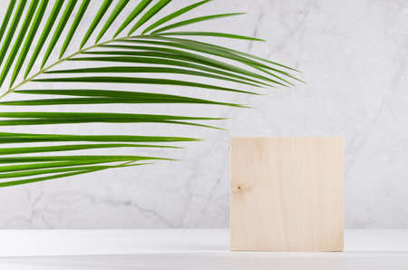 Wooden square podium with green palm leaf in sunlight on white wood table and marble wall. Fashion showcase for cosmetic products, goods, shoes, bags, watches.