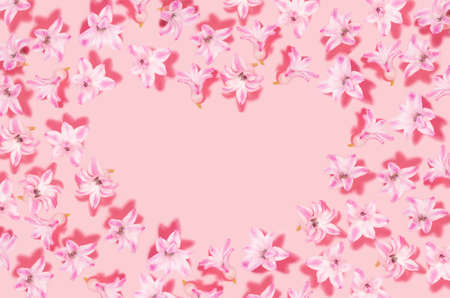 Pink hyacinth flower with shadows and heart shape blank space on pastel pink background. Valentine day and love backdrop.