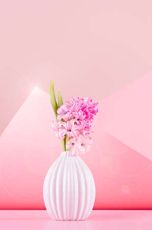 Bright spring hyacinth flowers in white ceramic vase in sun light with sun flare in elegant geometric contempory pink space with corner, copy space, vertical. Festive backdrop for womans day.