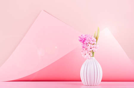 Bright delicate spring white hyacinth bouquet in ceramic vase with sunlight, sun flare on pastel pink geometric background in contempory style, copy space. Festive backdrop for wedding.