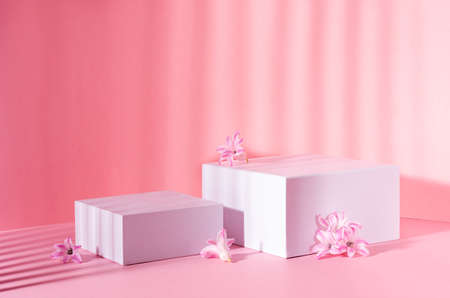 Set of two white square podiums for presentation cosmetic and produce in sunbeam with striped shadow with spring flowers on soft light pastel pink background.