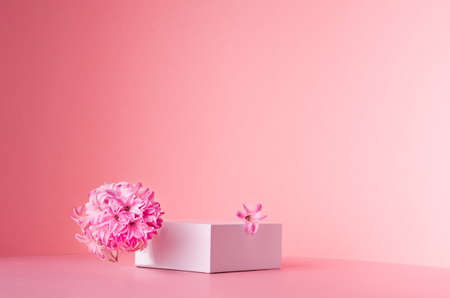 White square podium for display cosmetic, products with spring hyacinth flowers in sunlight on gradient pastel pink background, copy space.